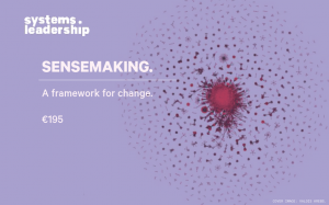 Sensemaking: A Framework for Change: picture of complex networks